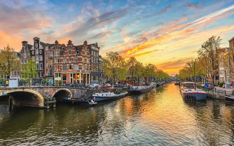 Amsterdam & floraison des tulipes 6