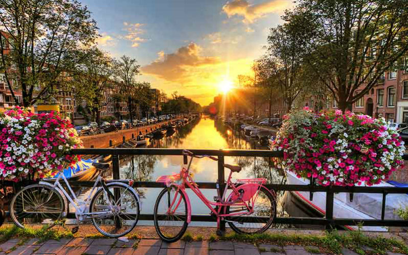 Amsterdam & floraison des tulipes 5