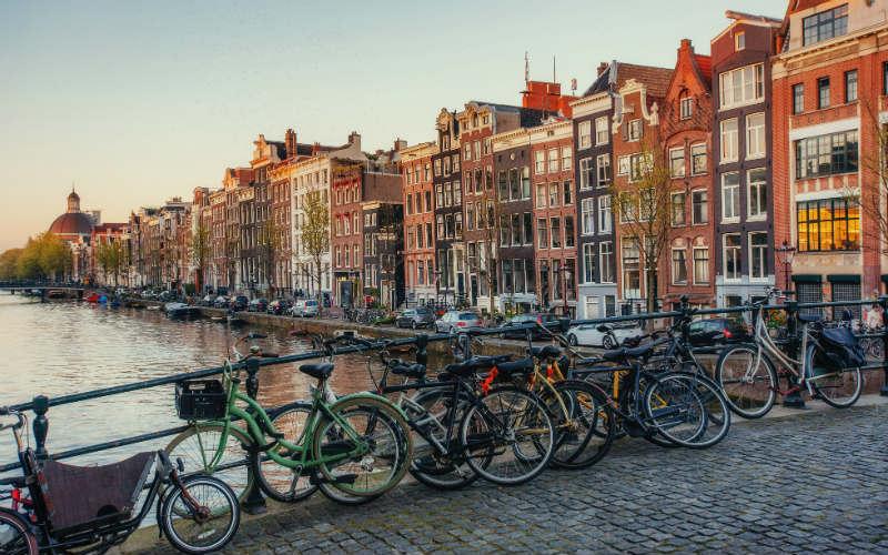Amsterdam & floraison des tulipes 3