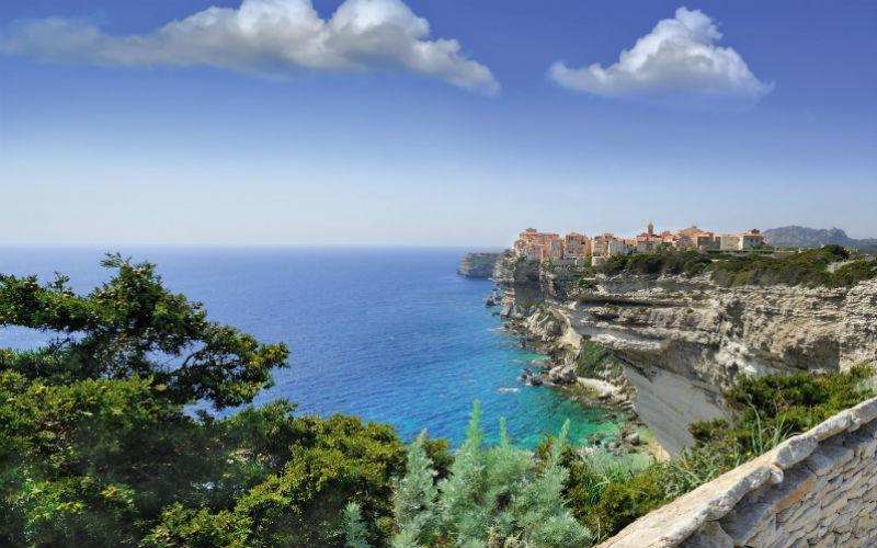 Blühender Frühling auf Korsika 2