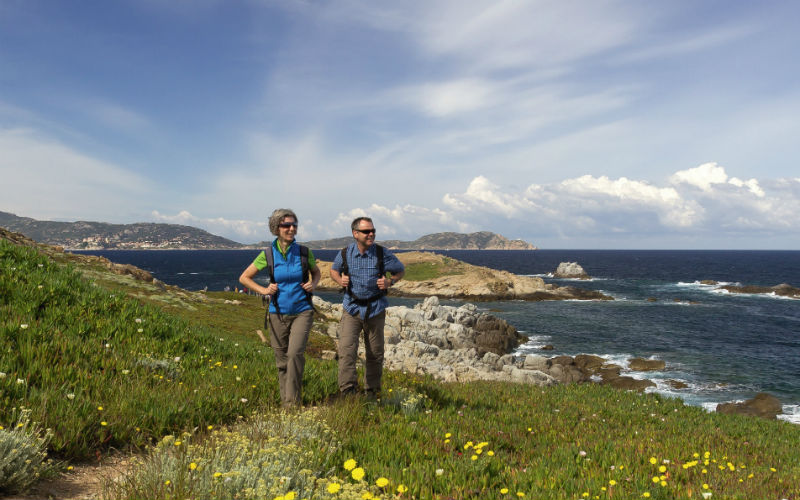 Blühender Frühling auf Korsika 4