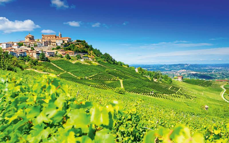 Genusswandern im Piemont 1