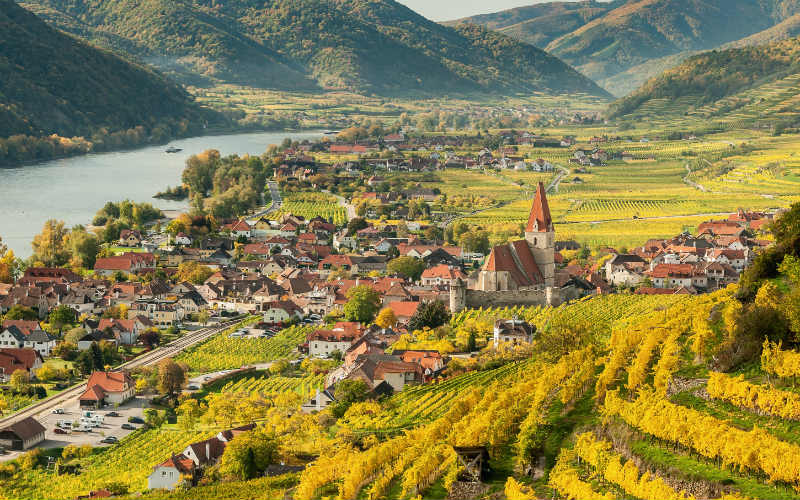 Auf der schönen blauen Donau 1
