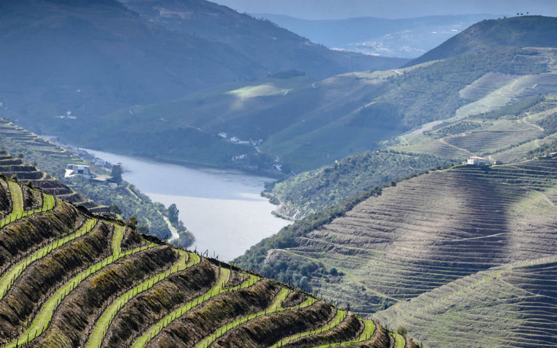 Douro - der Zauber Portugals 5
