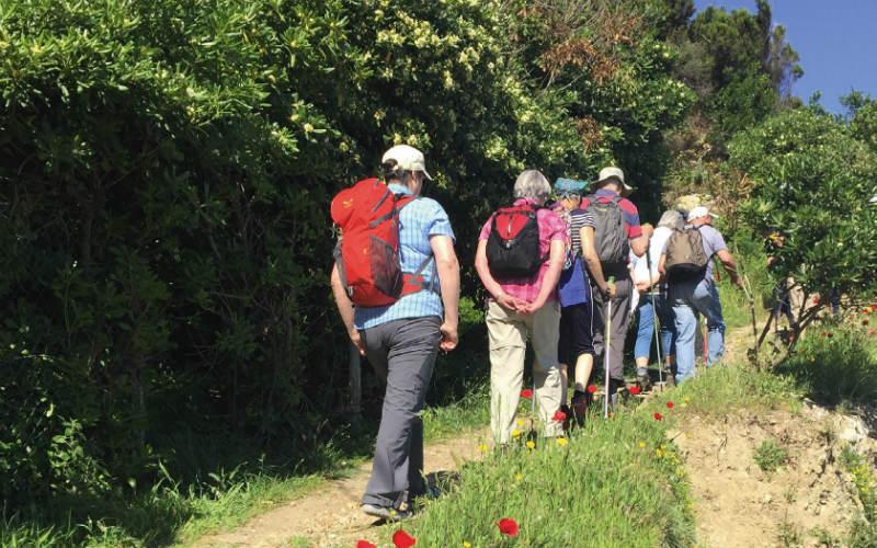 Wandern auf Elba 1