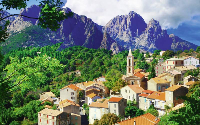 Blühender Frühling auf Korsika 5