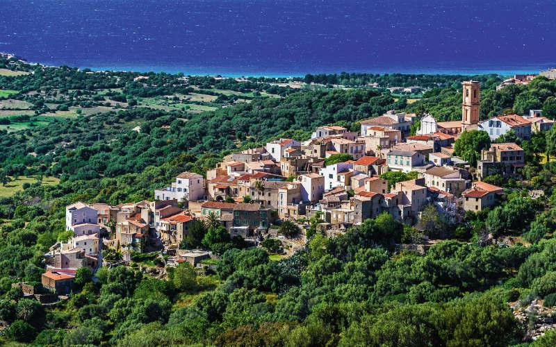 Blühender Frühling auf Korsika 8