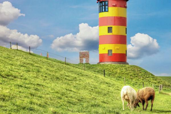 Traumhafter Sommer auf Rügen 1