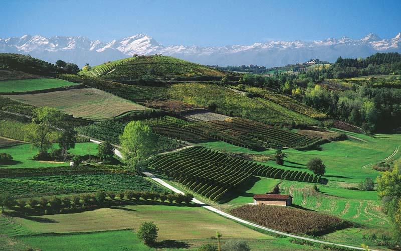Genusswandern im Piemont 4