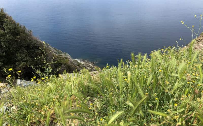 RB_ChristineAlbrecht_Korsika30