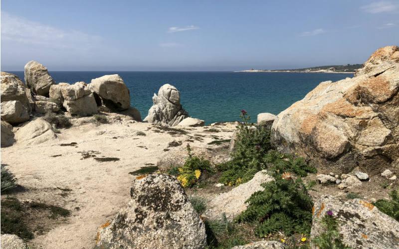 RB_ChristineAlbrecht_Korsika84