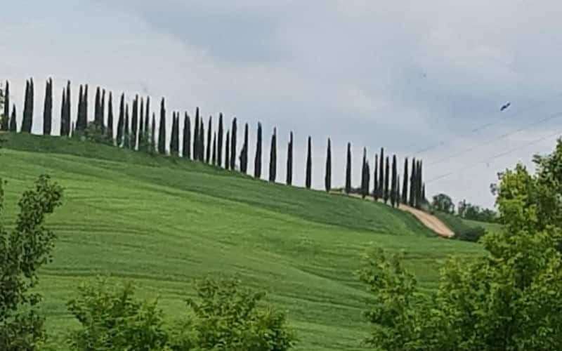 RB_ChristineOberholzer_Siena,Rom&Assisi7
