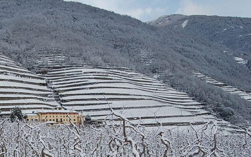 Bernina- & Glacier-Express im Winter 8