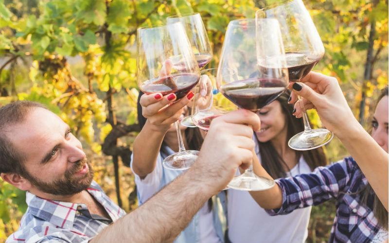 Weinwandern in der Südtoskana 3