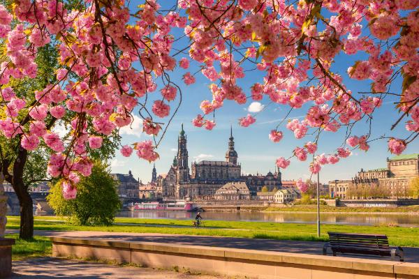 Zauberhaftes Dresden 600x400 TOP