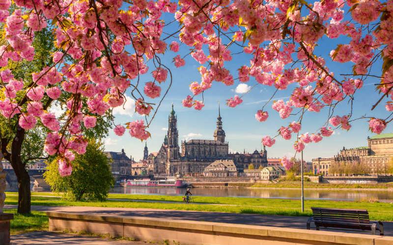 Zauberhaftes Dresden & märchenhafter Spreewald 3