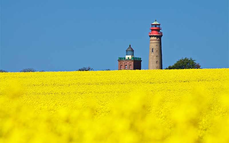 Traumhafter Sommer auf Rügen 3