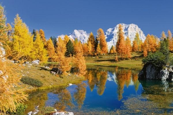 Herbst im TrentinoTOP