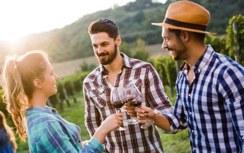 Zwei Männer Stossen Mit Einer Frau Mit Einem Glas Rotwein An