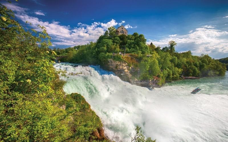 Des chutes du Rhin à l'île fleurie de Mainau 3