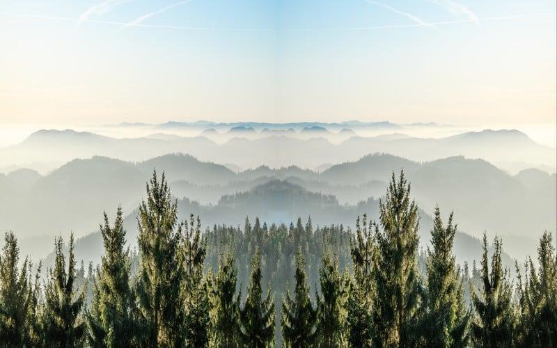 Schwarzwald & Elsass 5