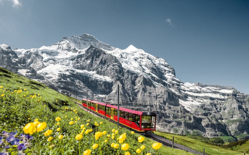 Vom Thunersee zum Jungfraujoch 1