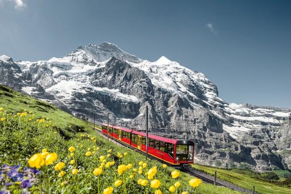 Vom Thunersee zum Jungfraujoch Bahn TOP 600x400