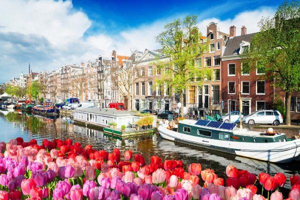 Amsterdam et les tulipes 3