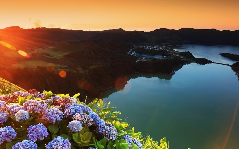 Azoren - Blütentraum im Atlantik 1